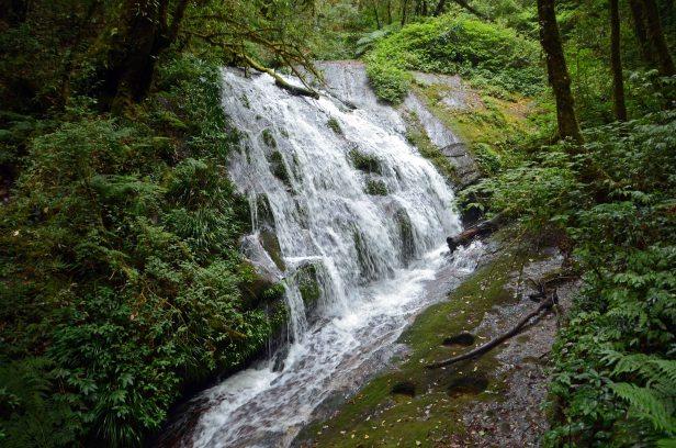 Waterfall on Kew Mae Pan, Nature Trail - Doi Inthanon