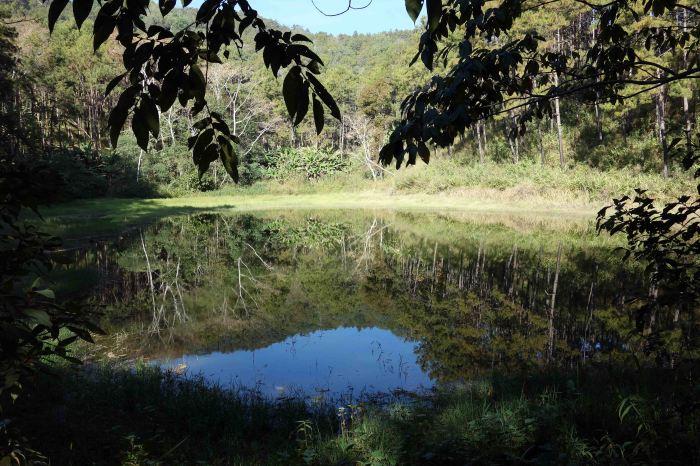 Small lake at Den Ya Khat Ranger Station, Doi Chiang Dao