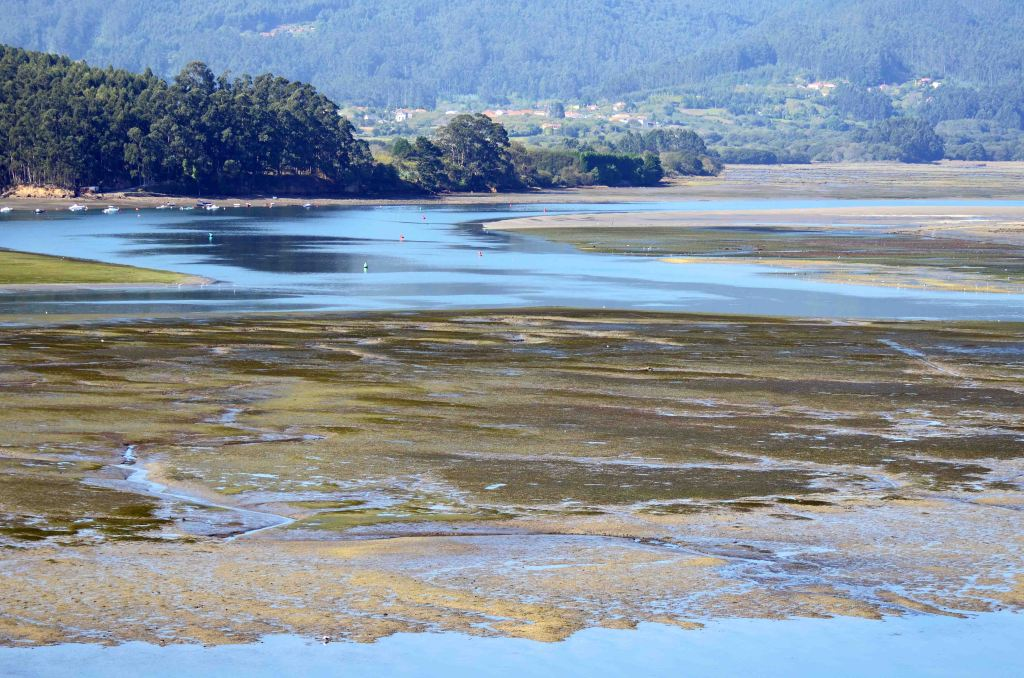 Mud flats at low tide by Ortigueira