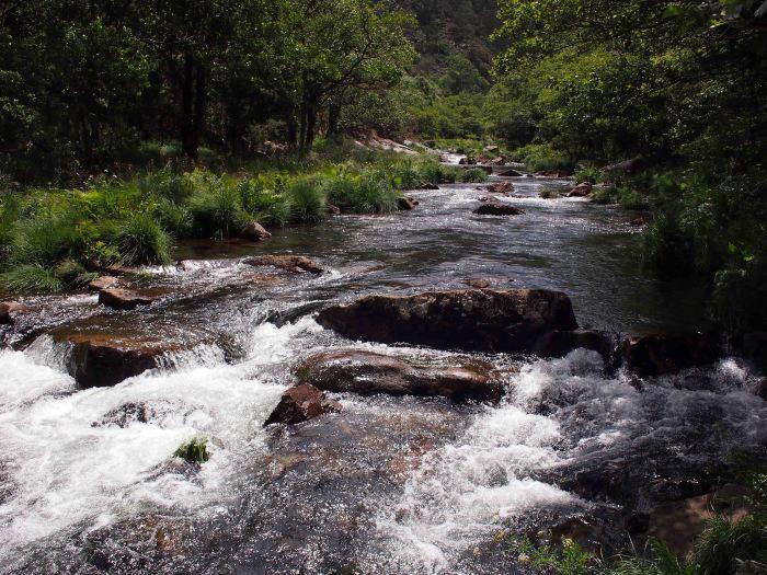 The fast flowing Rio Sor below the Mirador Agua Caida
