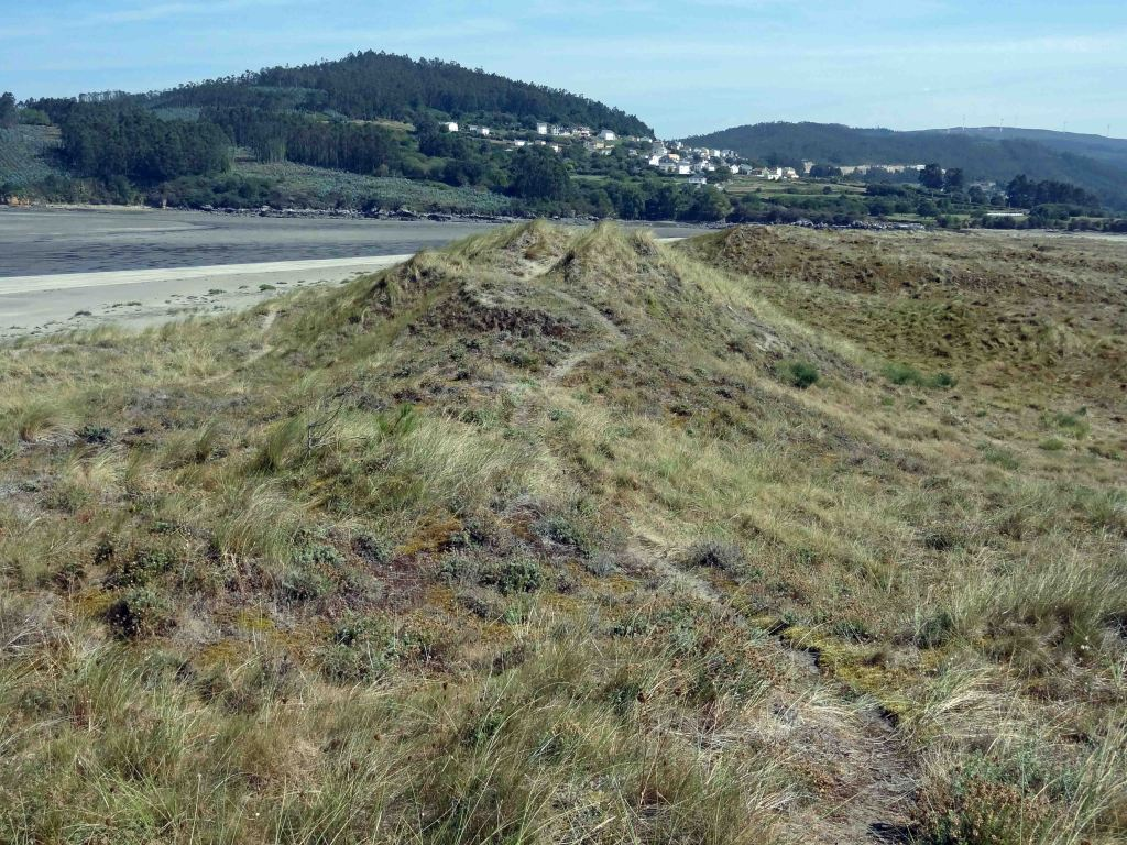 Dunes behind the beach with footpath