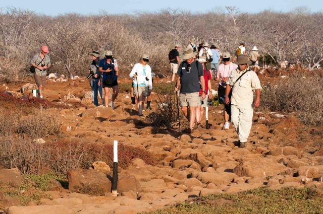 Trail through frigatebird colony on North Seymour, Galapagos