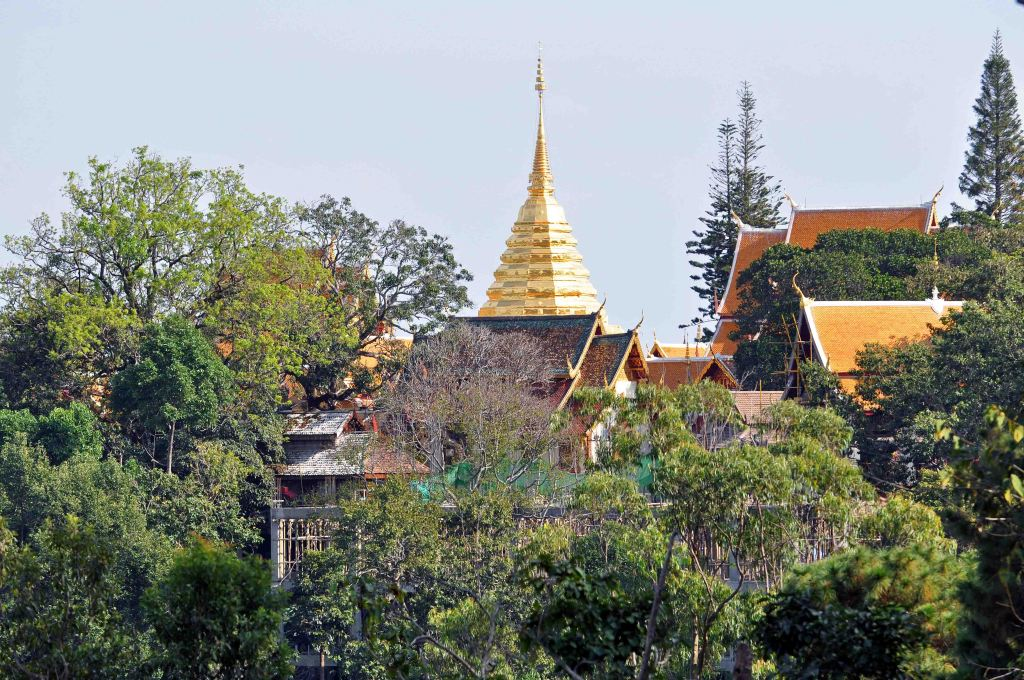 Wat Doi Sutep from Doi Sutep-Pui National Park