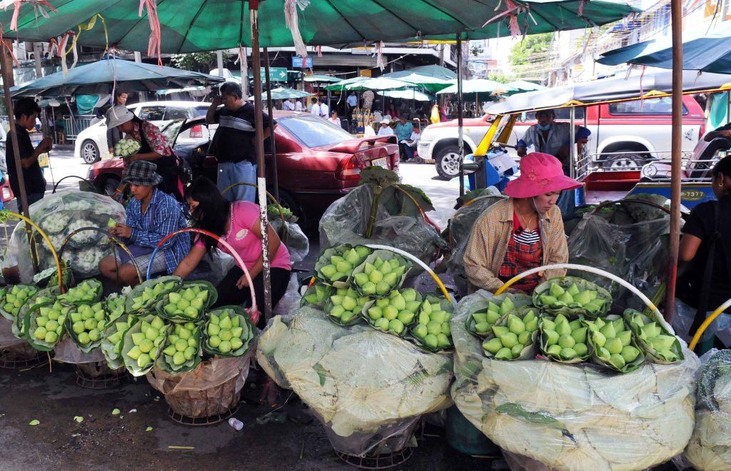 Lotus flower buds for sale in Bangkok (Pak Khlong talad)