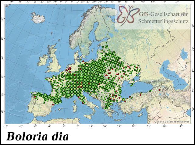 weaver's fritillary (Boloria dia) Asturias, Spain